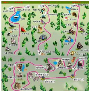 北京大兴野生动物园半日游