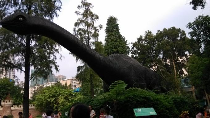 肇庆到广州动物园一天游