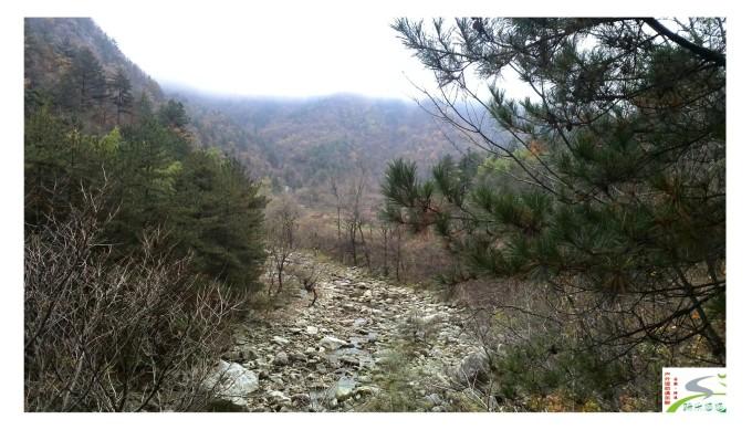 明堂山风景区方圆50余平方公里,主峰海拔1563米.