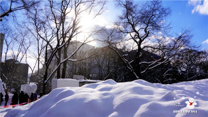 下雪的风景夏天的公园