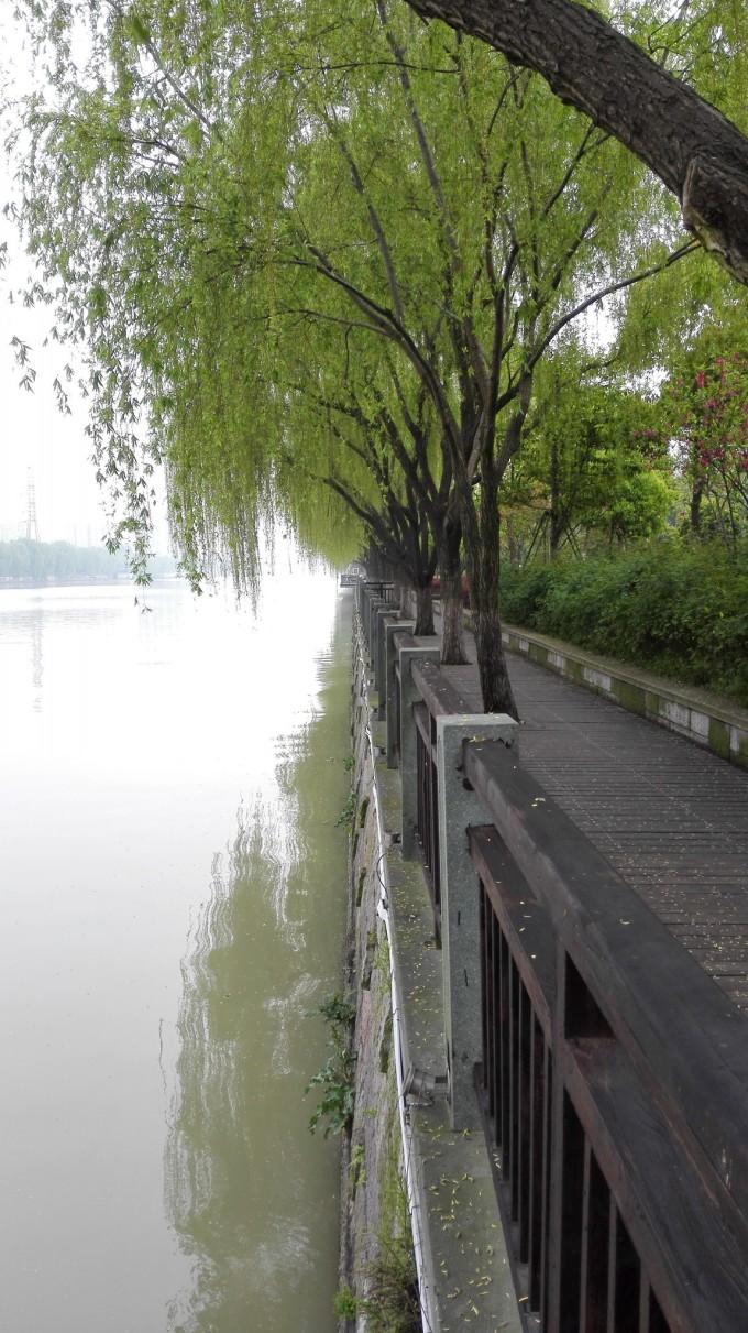 河南鹤壁市菱湖地图