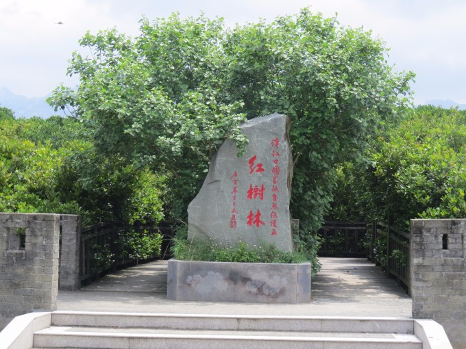 漳州云霄漳江口红树林保护区
