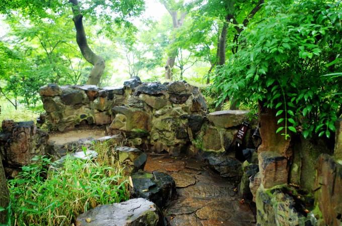 速写写生园林石头