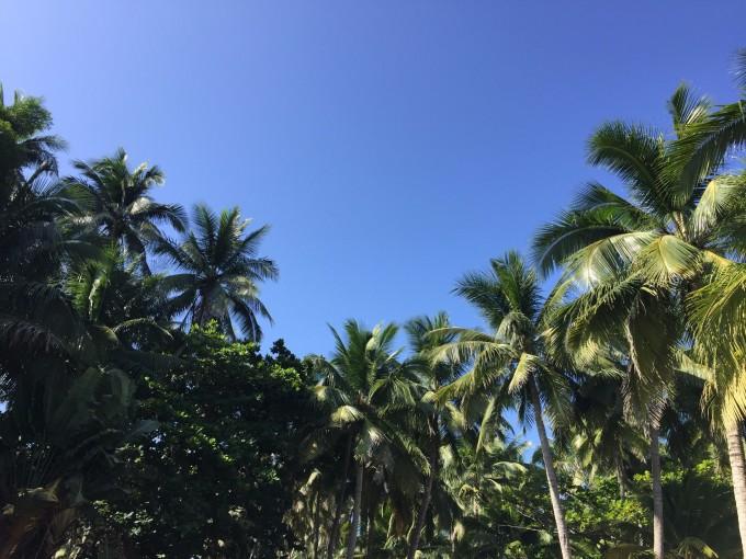 海南适合拍照的风景图