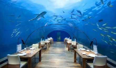 【蜂享迪拜】七星帆船酒店 海底餐厅—al mahara