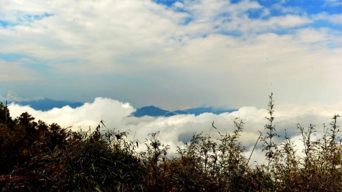 太平山原始森林公园
