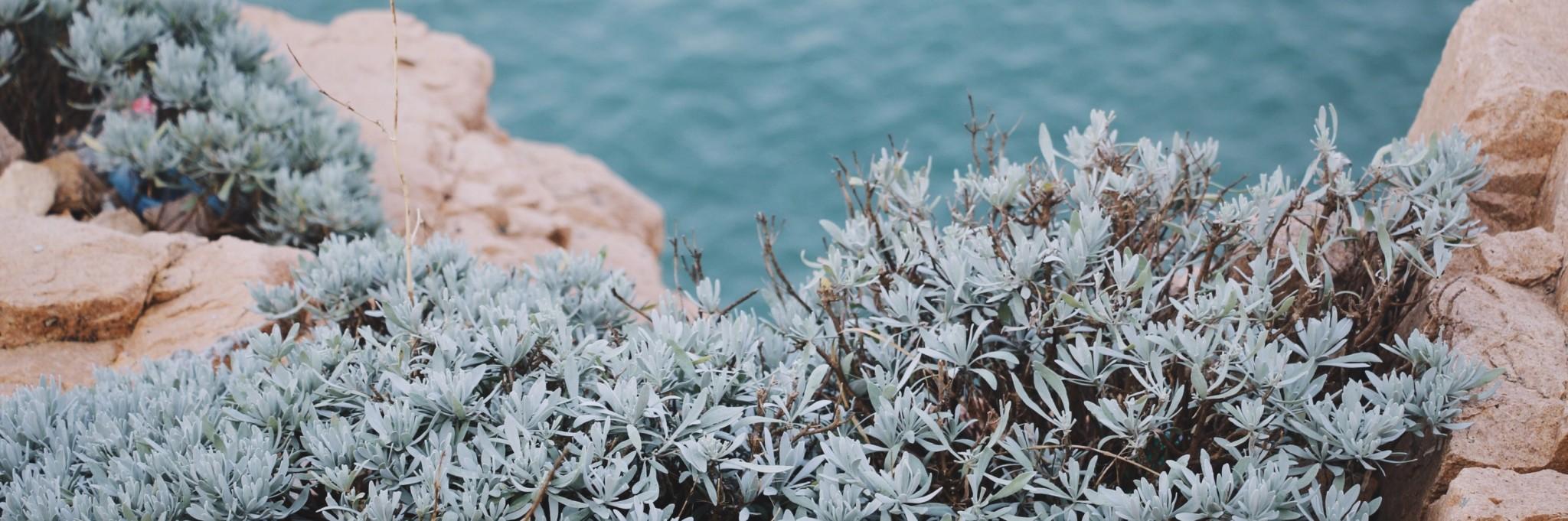 舟山东极岛之东福山岛 ——徒步环岛
